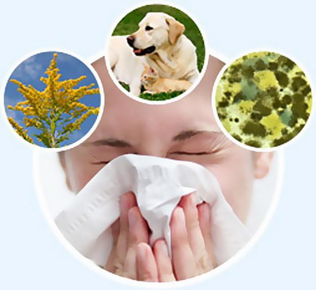 провокаторы бронхиальной астмы